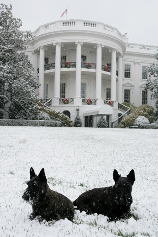 Happy Holidays from the White House