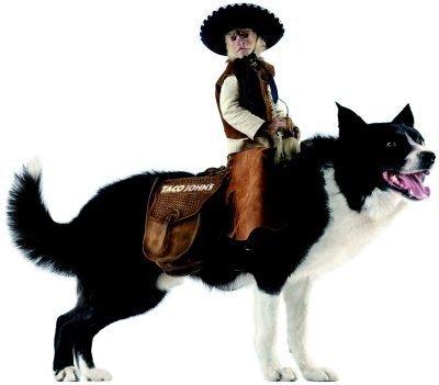 Whiplash - The Cowboy Monkey!