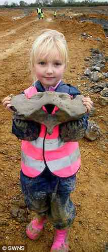 Budding Paleontologist Discovers Ice-Age Fossil