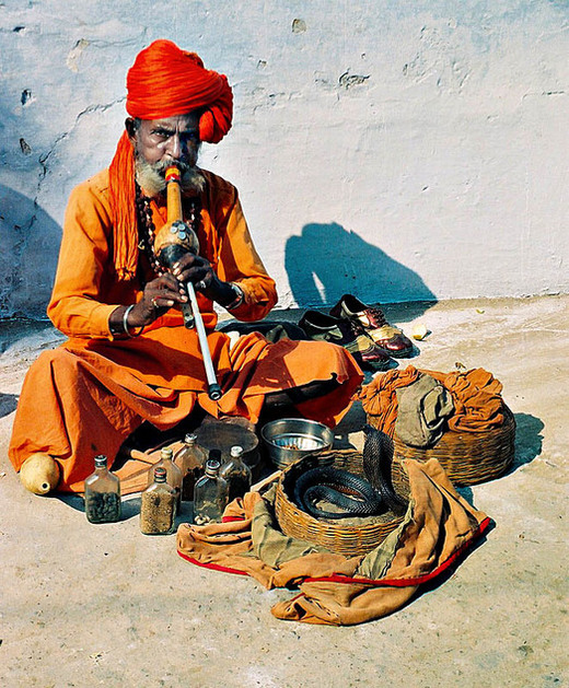 the art of snake charming The centuries-old art of snake charming in india has been on the decline for some time the charmers have a hard time making a living and the indian government has been strict about.