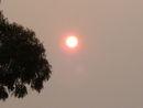 The Hazy Skies Of Northern California