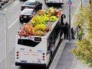 Coming To A Bus Stop Near You - A Rooftop Garden