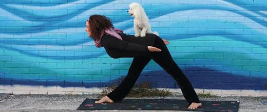 Yoga Goes To The Dogs